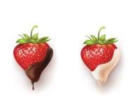 Красивые клубники в темном и белом шоколаде Стоковые Изображения
