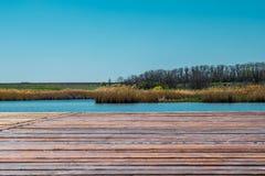 Красивые ландшафты России Зона Ростов Красочные места Зеленые растительность и реки с озерами и болотами Леса и mea стоковое фото rf