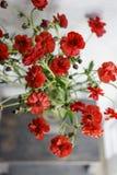 Красивые лютики Буш цветут в вазе на таблице Букет красного цветка Украшение дома Обои и Стоковое Изображение RF
