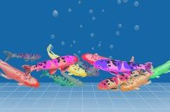 Красивые массы рыб карпа Стоковые Изображения