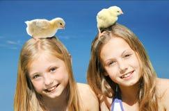 Красивые маленькие девочки играя с цыпленоками стоковое фото rf
