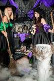 Красивые молодые ведьмы заваривая зелье Стоковые Изображения