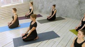 Красивые молодые женщины разрабатывая делающ тренировку йоги Стоковое фото RF