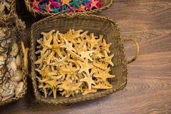 Красивые морские звёзды найденные для декоративных целей Стоковые Фотографии RF