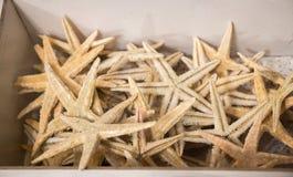 Красивые морские звёзды найденные для декоративных целей Стоковая Фотография RF