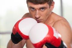 Красивые мышечные перчатки бокса молодого человека нося стоковое изображение rf