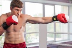 Красивые мышечные перчатки бокса молодого человека нося стоковые фотографии rf