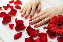 красивые ногти пальца с красными маникюром и лепестками Стоковое Фото