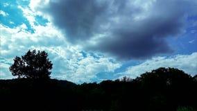 Красивые облака над лесом, видео timelapse 4K акции видеоматериалы