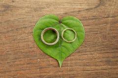 Красивые обручальные кольца золота на зеленых лист с деревянной предпосылкой Стоковые Фотографии RF