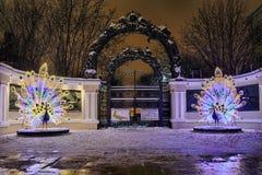 Красивые павлины на входе к зоопарку Москвы на кольце сада стоковые фотографии rf