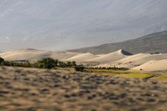 Красивые песчанная дюна и горы слоя в долине Nubra стоковые фотографии rf