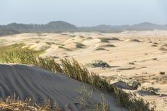 Красивые песчанные дюны в Сент-Люсия в Южной Африке стоковые изображения