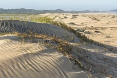 Красивые песчанные дюны в Сент-Люсия в Южной Африке стоковое изображение