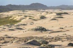 Красивые песчанные дюны в Сент-Люсия в Южной Африке стоковые фото