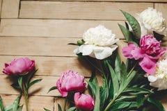 Красивые пионы пинка и белых на деревенском деревянном поле, плоском положении Флористическое оформление и расположение : Сельски стоковое изображение