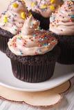 Красивые пирожные шоколада украшенные с конфетой брызгают Стоковое Изображение RF