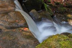 Красивые потоки водопада Стоковые Изображения RF