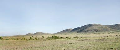Красивые пригорки в национальном парке Mara Masai Стоковое Изображение