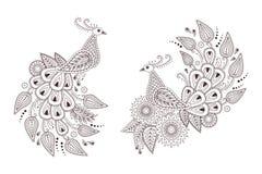 Красивые птицы павлина вектора в стиле Пейсли индейца Стоковые Фотографии RF