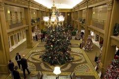 Красивые рождественские елки в роскошной гостинице Стоковые Изображения RF