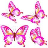 Красивые розовые бабочки, изолированные на белизне иллюстрация штока