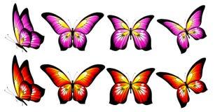 Красивые розовые бабочки, изолированные на белизне иллюстрация вектора