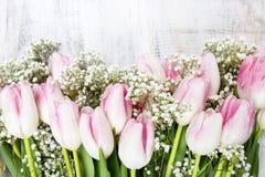 Красивые розовые и белые тюльпаны на деревянной предпосылке Стоковое Изображение RF