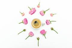 Красивые розовые розы и бутоны с чашкой кофе на белизне Стоковое Фото