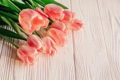 Красивые розовые тюльпаны на белой деревенской деревянной предпосылке предложение Стоковое фото RF