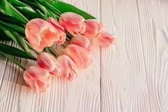 Красивые розовые тюльпаны на белой деревенской деревянной предпосылке предложение Стоковые Фотографии RF