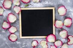 Красивые розовые цветки на серой каменной таблице граница флористическая Стоковое Изображение
