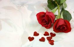 Красивые розы. Стоковое Фото