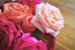 Красивые розы Стоковое Изображение