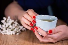Красивые руки женщины с красной глубиной поля маникюра и чашки ограни стоковое изображение