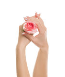 Красивые руки Стоковое Изображение RF