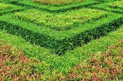 Красивые сады. Стоковое Изображение
