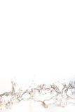 Красивые свадьба или рождество справедливо освещают с жемчугами Стоковые Фотографии RF