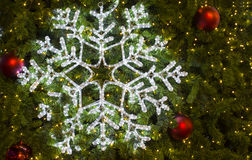 Красивые света рождественской елки Стоковая Фотография RF