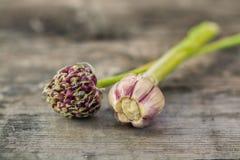 Красивые семена цветка чеснока и головы чеснока лежат на деревянном столе outdoors, Стоковая Фотография