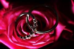Красивые сияющие обручальные кольца с диамантами на розовом подняли Стоковое Изображение RF