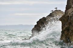 Красивые скалы сделанные сердитым океаном Стоковое Фото