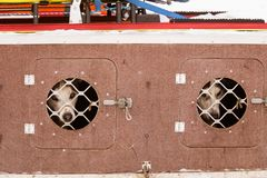 Красивые собаки Аляски осиплые ждать гонку собаки скелетона для того чтобы начать Стоковые Изображения RF