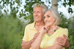 Красивые старшие пары обнимая в парке стоковые фотографии rf
