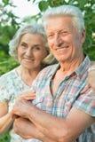 Красивые старшие пары представляя в парке лета стоковая фотография