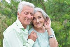 Красивые старшие пары представляя и обнимая в парке стоковое изображение rf