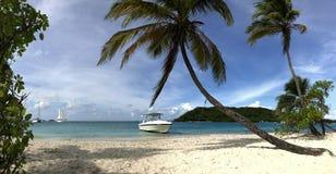 Красивые тропические белые пальмы пляжа и кокоса Стоковая Фотография