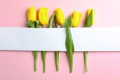 Красивые тюльпаны с пустой картой на светлой предпосылке, взгляде сверху стоковое изображение