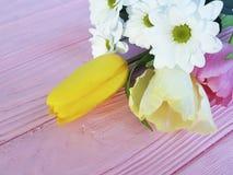 Красивые тюльпаны, хризантема на розовой деревянной предпосылке Стоковые Фото