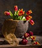 Красивые тюльпаны и красные яблоки Стоковые Фото